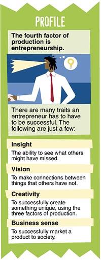 entrepreneur profile chart